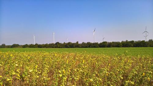 Větrníky, kam se podíváš